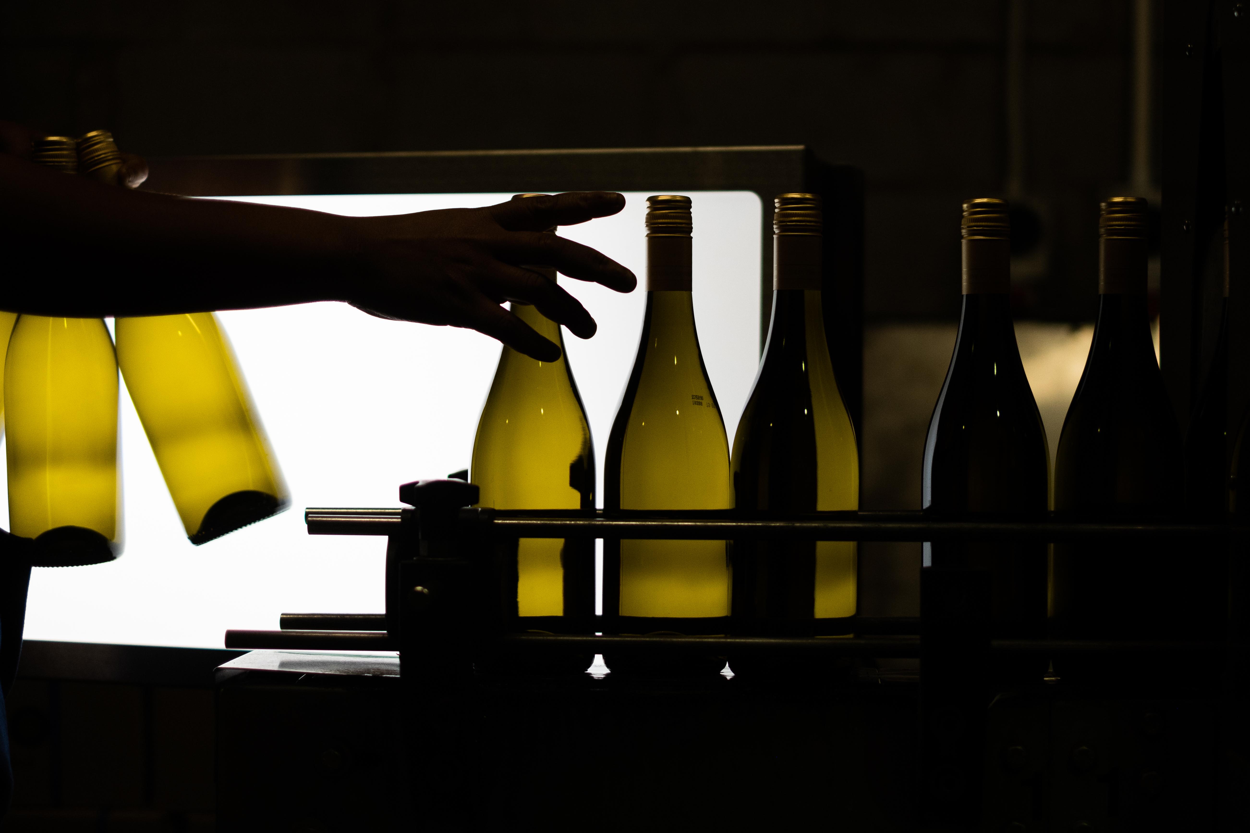 Diemersdal Sauvignon Blanc bottling