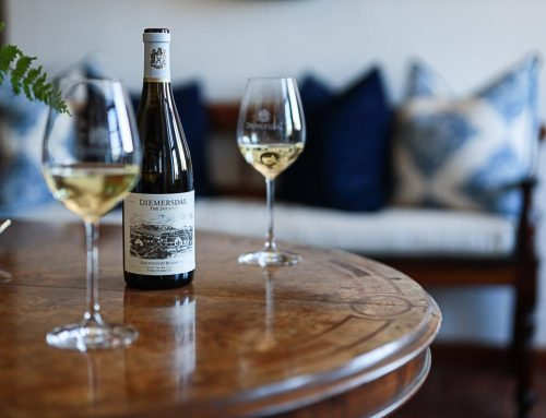 The Journal: A New Chapter in Diemersdal's Sauvignon Blanc Legacy